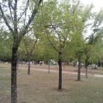 Camping_08